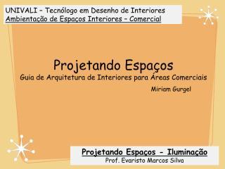 Iluminação - Seminario Livro - Miriam Gurgel.pdf