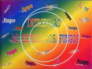 Aula biologia e importancia dos fungos 2009.1.ppt